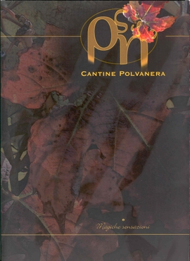 Polvaneracover
